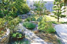 年月を重ねるごとに味わいを増す「散策する庭」 高知市T様邸