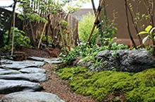 茶室のある和のお庭